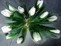 Bukiet biali tulipany obrazy stock