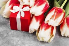 Bukiet biel menchii tulipany na szarym tle Zdjęcia Stock