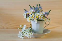 Bukiet biel pole kwitnie w filiżance z talerzem na zalecającym się zdjęcie stock