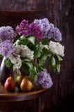 Bukiet bzów kwiaty i trzy bonkrety na starym rocznika krześle Wciąż życie na Ciemnym tle obrazy royalty free