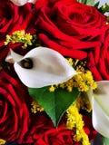Bukiet czerwona róż i białej kalia fotografia stock