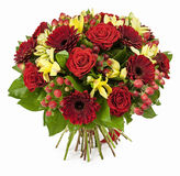Bukiet czerwone róże i gerberas odizolowywający na bielu Zdjęcie Royalty Free
