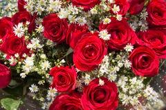 Bukiet czerwone róże z dziecko oddechu kwiatami zamyka up obraz stock