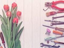 Bukiet czerwoni tulipany jest na białym drewnianym tle Blisko różnorodnych instrumentów wykłada up Obraz Royalty Free