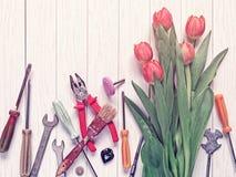 Bukiet czerwoni tulipany jest na białym drewnianym tle Różnorodność instrumenty rozpraszają wokoło Zdjęcie Stock