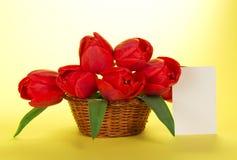 Bukiet czerwoni tulipany w koszu Obrazy Royalty Free