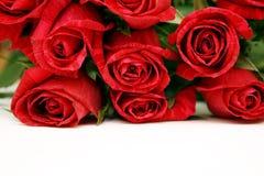 bukiet czerwonych róż Zdjęcie Royalty Free