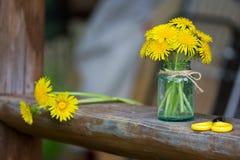 Bukiet dandelion kwiaty Zdjęcie Royalty Free