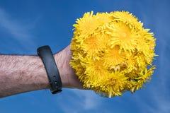 Bukiet dandelions w mężczyzna ` s ręce zdjęcia stock