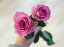 Bukiet dwa różowego zieleń liścia i róże Fotografia Stock