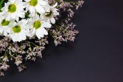 Bukiet dzicy kwiaty biały limonium na ciemnym tle i chamomile fotografia stock