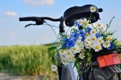 Bukiet dzicy kwiaty na bagażniku bicykl Fotografia Royalty Free