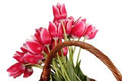 bukiet Easter Obraz Royalty Free