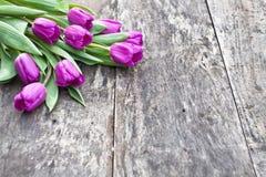 Bukiet fiołkowi tulipany na dębowym brązu stole Obraz Stock