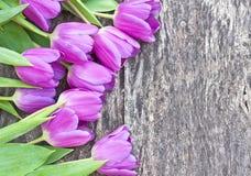 Bukiet fiołkowi tulipany na dębowym brązu stole Zdjęcia Royalty Free
