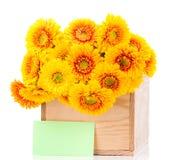 Bukiet gerber kwitnie w pudełku i kartka z pozdrowieniami Zdjęcia Royalty Free
