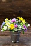 Bukiet kolorowi łąkowi kwiaty Obraz Royalty Free