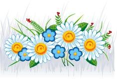 bukiet kwiatów lato Zdjęcie Stock