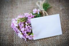 bukiet kwiatów wiosny Obraz Stock