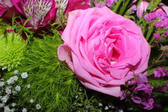 Bukiet kwiaty zdjęcia royalty free