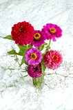 Bukiet kwiaty w czarnej wazie Fotografia Stock