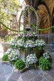 Bukiet kwiaty w podwórzu katedra Święty krzyż i święty Eulalia w gotyk ćwiartce, Barcelona, Hiszpania zdjęcie stock