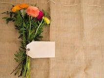 Bukiet kwiaty z pustym copytext i textfield Obraz Royalty Free