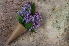 bukiet kwitnie bzu Rzemiosło papierowy kornet wypełniający z wiosny blo Obraz Stock