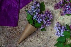 bukiet kwitnie bzu Rzemiosło papierowy kornet wypełniający z wiosny blo Zdjęcia Royalty Free