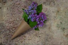 bukiet kwitnie bzu Rzemiosło papierowy kornet wypełniający z wiosny blo Obrazy Royalty Free