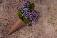 bukiet kwitnie bzu Rzemiosło papierowy kornet wypełniający z wiosny blo Obraz Royalty Free