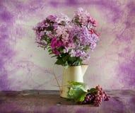 bukiet kwitnie winogradu obraz stock