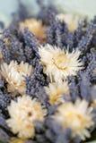 Bukiet lawenda i suszy kwiaty Kolorowa lato wiązka purpurowa lawenda i żółty chamomile kwitnie Zdjęcie Royalty Free