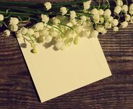 Bukiet leluje dolina i pusta biel karta dla inskrypci Obrazy Royalty Free