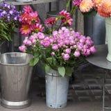 Bukiet lile róże w galwanizującym wiadrze jako dekoracja wejście sklep Zdjęcie Royalty Free