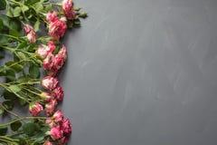 Bukiet menchie dostrzegał krzak róże na szarym tle Odgórny widok Romantyczna lub walentynka karta z miłością kosmos kopii Fotografia Stock