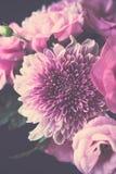 Bukiet menchie kwitnie zbliżenie, eustoma i chryzantemy, Fotografia Stock