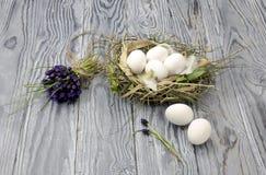 Bukiet muscari i jajka w gniazdeczku Zdjęcia Royalty Free