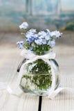 Bukiet niezapominajka kwitnie w szklanej wazie Zdjęcia Royalty Free