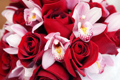 bukiet orchidea wzrastał Obraz Stock