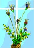 Bukiet palcowi kwiaty Zdjęcia Stock