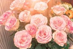Bukiet piękne delikatne różowe róże w świetle słonecznym obraz royalty free