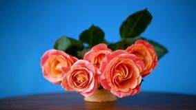 Bukiet piękne różowe róże odizolowywać na błękicie zbiory