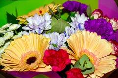 Bukiet piękni asortowani kolory obrazy royalty free