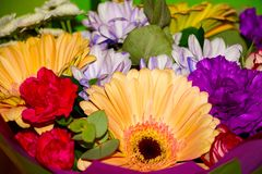 Bukiet piękni asortowani kolory zdjęcie stock