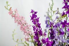 Bukiet purpurowi wildflowers na bia?ym tle obrazy royalty free