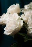 bukiet róż białe Zdjęcie Stock