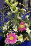 Bukiet róż, gerberas i białych chryzantemy Obraz Stock