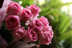 Bukiet róż wnętrza różowy tło Zdjęcia Royalty Free
