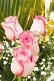 bukiet róże fotografia stock